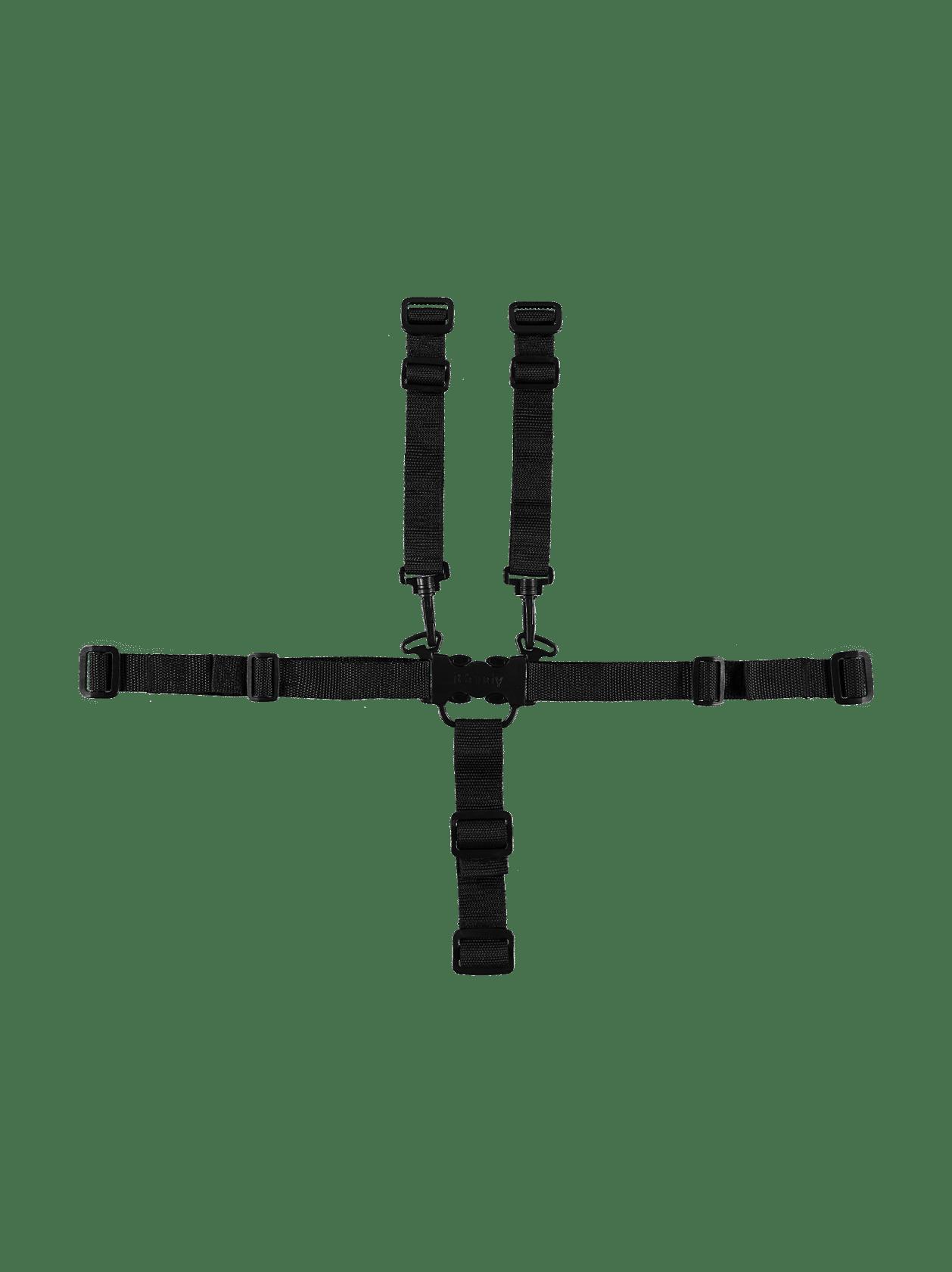 Raspberry 5-Point Harness Straps